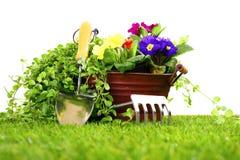 Jardinar objeta em um gramado e em um fundo branco Foto de Stock Royalty Free