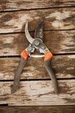Jardinar scissor na tabela fotos de stock royalty free