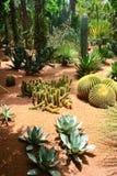 Jardine Majorelle en Marrakesh, Marruecos Imágenes de archivo libres de regalías