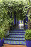 Jardine majorelle on a rainy day Royalty Free Stock Photo