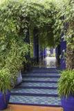 Jardine majorelle on a rainy day. Gardens Majorelle on a rainy day Royalty Free Stock Photo