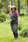 Jardineiro com lata molhando Foto de Stock