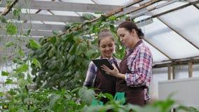 Jardineiro da mulher com sua filha que usa o tablet pc video estoque