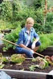 Jardineiro da mulher em um jardim vegetal fotografia de stock royalty free