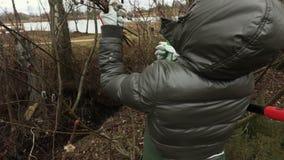Jardineiro da mulher perto do arbusto do salgueiro com tesouras filme