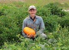Jardineiro do homem no jardim que sorri guardando uma abóbora madura grande foto de stock