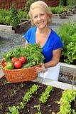 Jardineiro do vegetal da senhora fotografia de stock