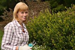 Jardineiro feliz Fotos de Stock Royalty Free