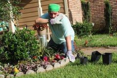 Jardineiro masculino no jardim da frente - calor Fotografia de Stock