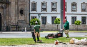 Jardineiro municipais que segam a grama no centro da cidade Foto de Stock