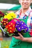 Jardineiro no jardim ou no berçário do mercado Foto de Stock Royalty Free