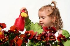 Jardineiro pequeno Foto de Stock Royalty Free