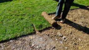 Jardineiro que aplica o turfof para rolar a grama verde do gramado o quintal imagens de stock royalty free