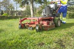 Jardineiro que sega a grama com a segadeira posta do motor na paridade urbana Imagens de Stock Royalty Free
