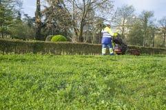 Jardineiro que sega a grama com a segadeira posta do motor na paridade urbana Fotografia de Stock