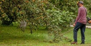 Jardineiro que usa a grama verde de corte de máquina no jardim Equipamento de jardim Homem novo que sega a grama com um ajustador imagens de stock royalty free