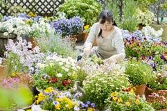 Jardinería Foto de archivo libre de regalías