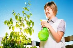 Jardinería Imagen de archivo