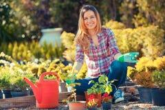 Jardinería Fotografía de archivo