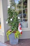 Jardinera con diversas flores y bandera canadiense en el centro de la ciudad visto del Niágara-en--lago de la provincia de Ontari fotos de archivo