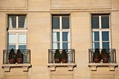 Jardinere alla finestra Immagini Stock
