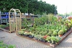 Jardinerie de pépinière Photo libre de droits