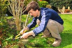 Jardinero imagen de archivo libre de regalías