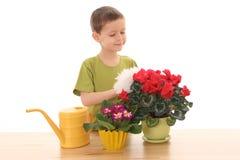 Jardinero Foto de archivo