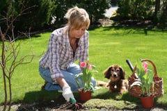 Jardinero bonito Imagen de archivo libre de regalías