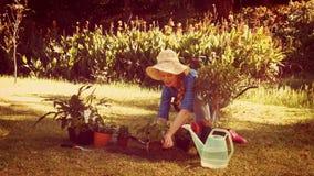 Jardinero bonito feliz que planta la flor almacen de metraje de vídeo