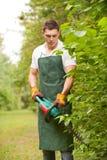 Jardinero con el condensador de ajuste de seto foto de archivo libre de regalías