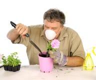 Jardinero con la máscara Imagenes de archivo