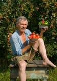 Jardinero con las manzanas y los vehículos 3 fotos de archivo