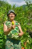 Jardinero con los pepinos 1 imagen de archivo libre de regalías