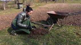 Jardinero de la mujer cerca del arbusto y de la carretilla metrajes