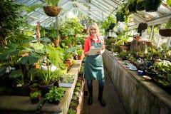 Jardinero de sexo femenino con el tablero en el invernadero Fotos de archivo libres de regalías