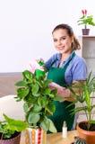 Jardinero de sexo femenino joven con las plantas dentro imágenes de archivo libres de regalías