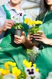 Jardinero de sexo femenino y de sexo masculino en jardín de mercado Imágenes de archivo libres de regalías