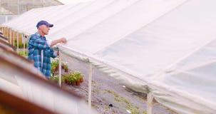 Jardinero de sexo masculino confiado que examina la planta en conserva de la flor almacen de metraje de vídeo