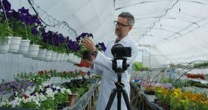 Jardinero de sexo masculino que presenta la planta a la c?mara metrajes