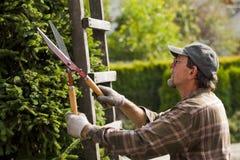 Jardinero durante trabajo Foto de archivo libre de regalías