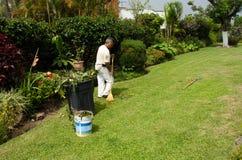 Jardinero en el trabajo Imágenes de archivo libres de regalías