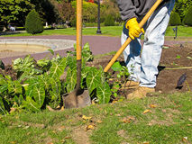 Jardinero en el trabajo en parque público Imagen de archivo