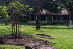 Jardinero en parque Imágenes de archivo libres de regalías