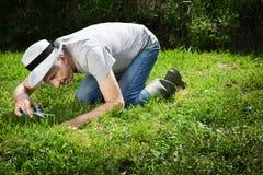 Jardinero extraño. Imagen de archivo libre de regalías