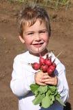 Jardinero joven del muchacho Imagen de archivo