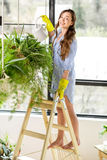 Jardinero joven en el naranjal con las plantas verdes imagen de archivo libre de regalías