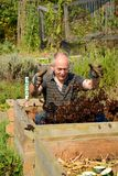 ¡Jardinero loco feliz con su estiércol vegetal! Fotografía de archivo libre de regalías