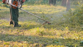 Jardinero Mows la hierba verde del cortacésped almacen de video