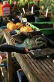 Jardinero orgánico Imagenes de archivo